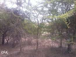 Kwa vonza 4.5 acres