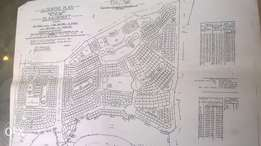 land rezoned township
