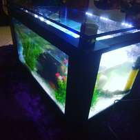 Coffee table aquarium medium