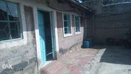 Uhuru ph4 1b/r to let, very neat ksh 13k pm