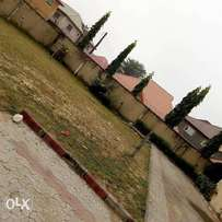 A full plot of land at Magodo shangisha C of O N65mill asking