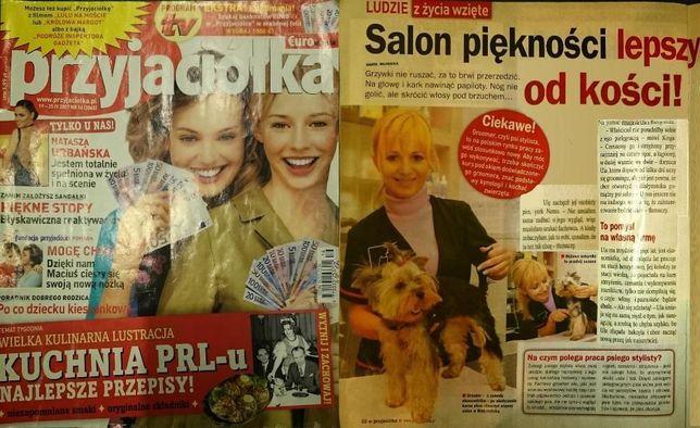 Archiwalne Salon Psi Fason Strzyżenie Psów W Białymstoku Psi