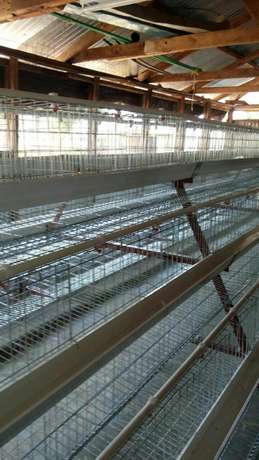 End month offer for layers cages for 500 birds Kamuthi - image 2
