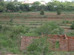 Affordable Prime Serviced 1/8 acre plots for sale - Kyaani Matuu