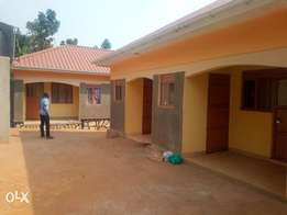 Prestigious double rooms are available for rent in bweyogere centre