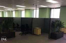 New Office Dividers
