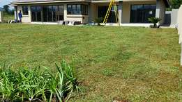 supply a comprehensive range of ready to lay turf grass