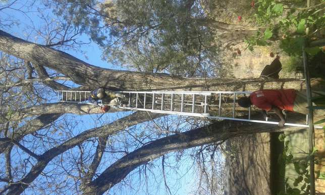 we are good in installing grass and tree felling R30 Faerie Glen - image 2