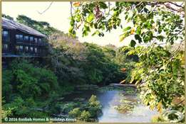 Running Business: Famous Lodge in Shimba Hills on Sale ID-KE214