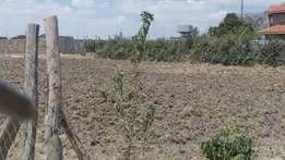 Quater acre plot in chuna kitengela