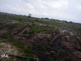 Valentine Promo. A plot of land for 900000k. Buy 5 plots,get one extra