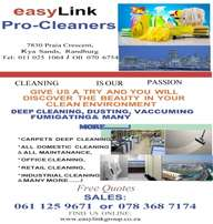 Deep Cleaning Of Carpets Couches & Mattresses