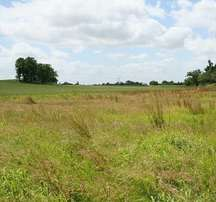 2 plot of land in badagry