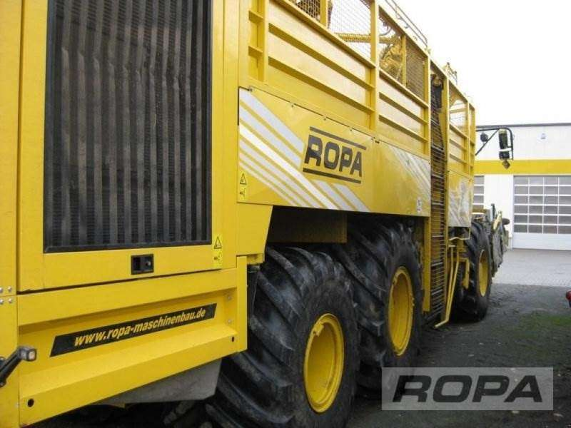Ropa Euro-tiger V8-4b - 2014 - image 23
