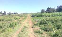 Kenya Safehomes 1/8&1/4 residential plots for sale, ngata-kirobon