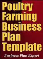 Professional Poultry Business plan