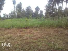 50x100 plots for sale in ndumberi 2m