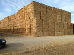 Bales of Hay and grass available from R30 per bale Pretoria West Pretoria West - image 3