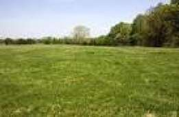 3 Hectares of Multipurpose land in Mabuchi with C of O