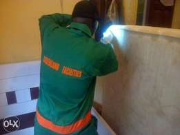 We are the best bed bug fighter company in Lagos