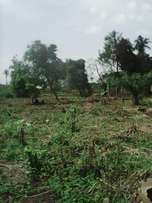 Fenced 23Acres Of Land at Ayetoro Ayobo Lagos.CofO. Per Plot