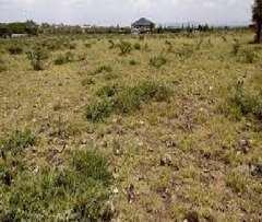 40 Acres at Athi River along Mombasa Road Ksh. 20M/Acre