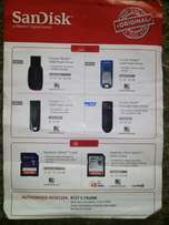 SanDisk flash drive and SD card