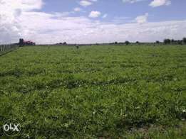 Selling 2 Acres at Kinanie Athi River