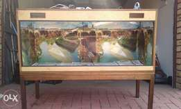 FULLY kitted reptile tank