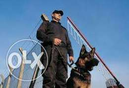 We do Special events security