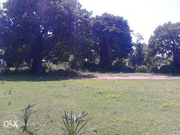 Plot for sale Mishomoroni Very nice place