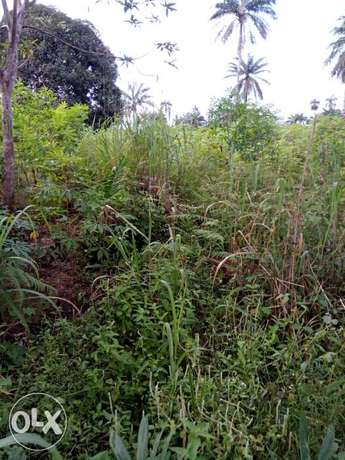 Lands for sell 100 by 100, 50 by 100, location is Akpabuyo LGA Calabar - image 3