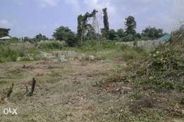 Land In Plots And Acres At Opic, Isheri North > 300 Plot Land