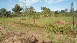 Land for sale - 1,100,000