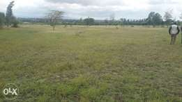 Loresho. 1 acre at 80m,near the eyes clinic