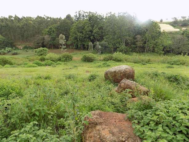 Thika Greens 1/4 acre plot for sale Thika - image 3