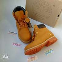 Butter Color 6inch Timberland Waterproof Boot
