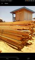 Cypress and Pine Timber from Molo
