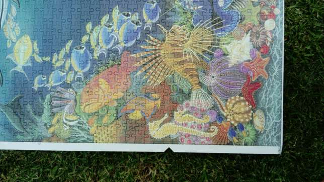 1500 piece completed ocean puzzle River Crescent - image 7