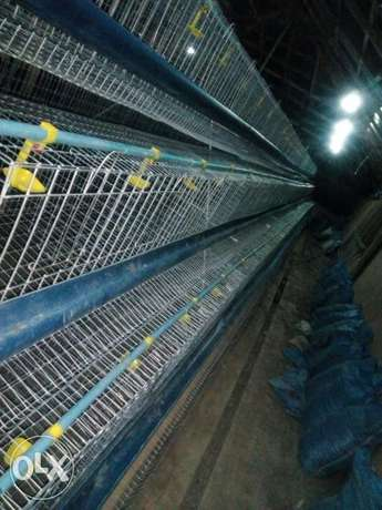 Galvanized local fabricated cages Ijebu Ode - image 1