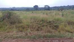 Cheap plots for on Nakawuka rd