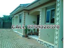 Organised double self contained in Kisaasi at 350k
