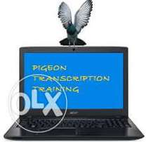 Affordable transcription training