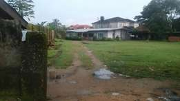 A land and property for sale at marian