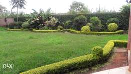 Prime Runda 1.5 Acres for sale