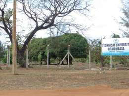 OFFER PRICE!!! Mwapala Farmland