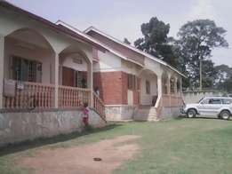 Charming two bedrooms units for rent in Naalya