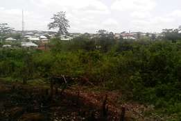 Acres of Land behind Hallmark University is available for sale(600,000