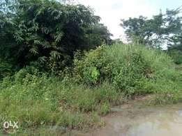 Land for sale 100×100