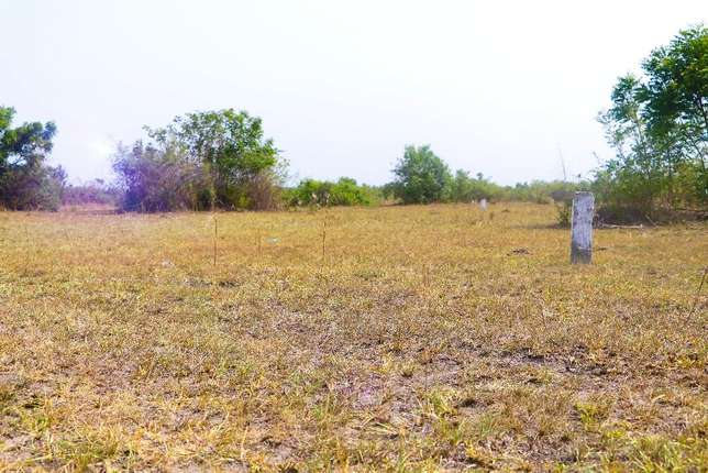 Afienya land at Teachers Housing project 4 sale Tema Metropolitan - image 3
